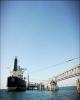 چین واردات نفت از آمریکا را بهطور کامل متوقف کرد