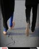 لزوم توجه بیشتر به پیادهروی زائران امام رضا(ع)