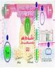 تدبیر امارات برای کاهش جعل درهم