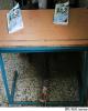18 هزار کلاس درس آذربایجان غربی نیازمند استانداردسازی