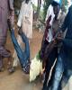کشتار مسلمانان در اربعین سنت دولت نیجریه شده است