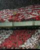 AFC: کاشیما خود را برای ورود به «دیگ جوشان آزادی» آماده کند