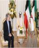 دیدار خداحافظی سفیر ایران با امیر کویت