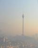 ارائه بنزین یورو ۴ یک عامل در کاهش آلودگی هوا/ عوامل متحرک دارای بیشترین نقش در آلودگی هوا