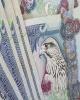 سپرده گذاری دولتی امارات به رکورد ۷۷.۸ میلیارد دلار رسید