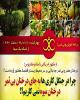 بلای کاشت درختان بی ثمر برای محیط زیست