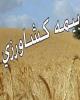 آغاز پرداخت غرامت سیل به بیمه گذاران کشاورزی از ۱۵ فروردین