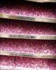در سال پیش، صادرات غنچه گل محمدی بردسیر کرمان ۲ و نیم میلیون یورو ارزآوری داشت