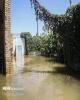 خیران لبنانی ۳۶۰ هزار دلار به سیل زدگان خوزستان کمک کردند