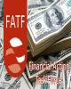 بازرسی FATF از نظام بانکی و مالی امارات؛ زنگ هشدار برای ایران