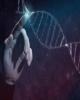 تهیه مجموعه سلولی حیوانات/ شناسنامه دار شدن رده های سلولی