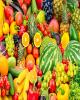 انواع میوه دستچین در غرفههای تره بار/ سکه به قیمت ۴ میلیون و ۶۴۵ هزار تومان رسید