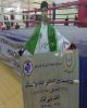 نایب قهرمانی کارمند بانک ملی ایران در مسابقات کیک بوکسینگ گرجستان
