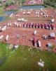 تلفات طوفان «مایکل» در آمریکا به ۱۸ تن رسید/ تصاویر