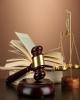 اتهام 5 متهم پرونده محیط زیستی به افساد فی الارض تغییر کرد
