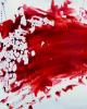 قتل ۲ زن در خیابان شاهمرادی/ متهمان بازداشت شدند
