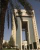 عربستان نفت را ترک میکند؟