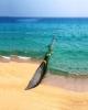 فناوری تصفیه آب دریا رونمایی شد