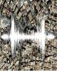 ثبت دو زلزله بیش از ۴ ریشتر و ۱۲ زلزله بزرگتر از ۳ در کشور
