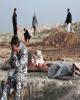 کشف اجساد نامزدهای انتخابات عراق در گور دسته جمعی قربانیان داعش