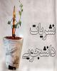 """شروع ثبتنام جشنواره سراسری """"تیتر ۱۱"""" از ۲۰ آبان"""