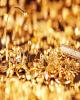 کشف ۲۷ کیلو طلای قاچاق در فرودگاههای کشور
