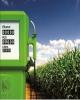 مشارکت ۹۰۰ میلیارد ریالی بانک تجارت در حوزه انرژیهای پاک