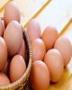 تعرفه واردات تخممرغ چقدر است؟
