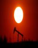 قیمت نفت سقوط کرد