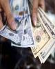 تخصیص ارز به صادرکنندگان پای بند قانون ادامه می یابد