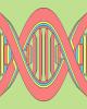 استارتآپی که امکان میدهد از DNA خود پول درآورید
