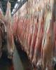 تشریفات گمرکی یک میلیون کیلوگرم گوشت انجام شده است