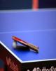 کسب سه مدال در بحرین ارزشمند بود/ تنیس روی میز ایران آینده درخشانی دارد