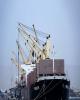 رونق تردد کشتی ها به دروازه طلایی اقتصاد ایران