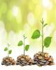 رونق تولید داخلی از مسیر ارزش آفرینی و تولید ثروت