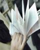 موانع حذف نسخ کاغذی / چالشهای پرداخت آنلاین دستمزد پزشکان