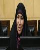 چنارانی مدعی نفع شخصی مدافعان بیمه دی در موضوع ایثارگران شد