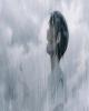 ژاپن نماینده خود در اسکار ۲۰۲۰ را مشخص کرد/ آیا یک انیمیشن جایزه اسکار را تصاحب میکند؟