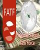رفتارهای سیاسی FATF