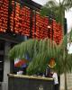 افتتاح حساب برای سرمایه گذاران خارجی