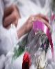 بانک صادرات ایران ٤ هزار زوج جوان را به خانه بخت فرستاد