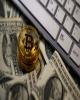 ثروتمندترین افراد جهان به لحاظ دارایی ارز رمزنگار معرفی شدند